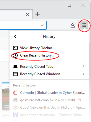 how to delete website history