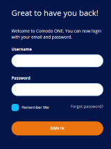 Login to CRM, Managed Service Providers, Customer