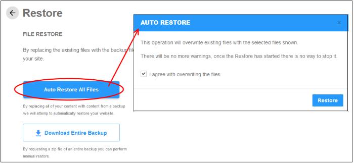 Restore And Download Website Files, Website Scans, Web Traffic